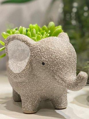 Cachepot Concreto Baby Elephant Cinza