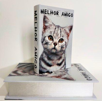 Jogo Caixas Livro em MDF Gatos