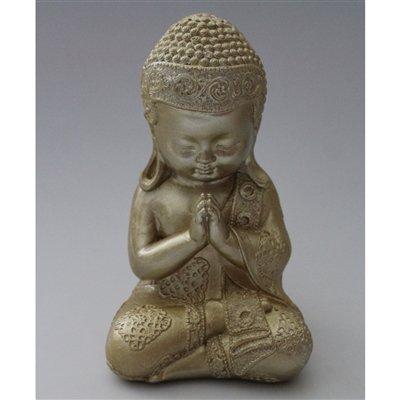 Monge da Meditaçao Buda